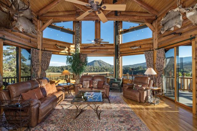 34996 Piute Trail, Julian, CA 92036 (#180057038) :: Whissel Realty