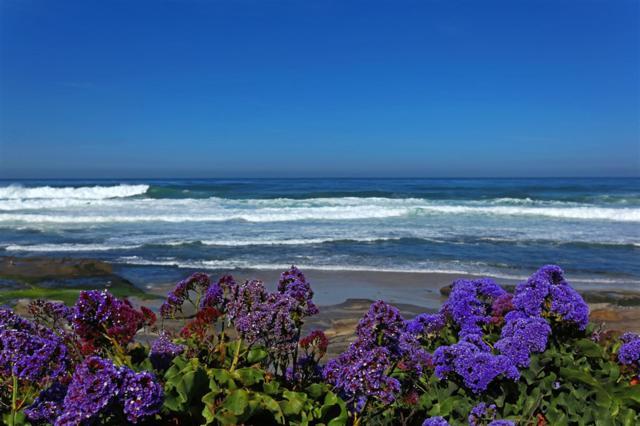 333 Coast Blvd #1, La Jolla, CA 92037 (#180057075) :: Welcome to San Diego Real Estate