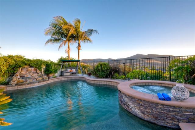 10106 Lone Dove St, San Diego, CA 92127 (#180057320) :: KRC Realty Services