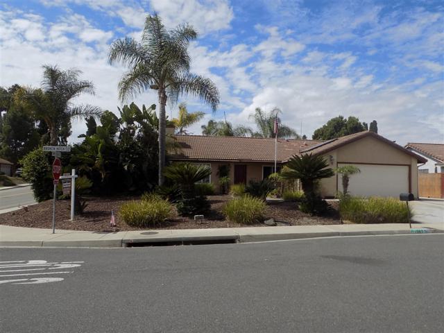 1397 Broken Hitch Road, Oceanside, CA 92056 (#180057457) :: Keller Williams - Triolo Realty Group