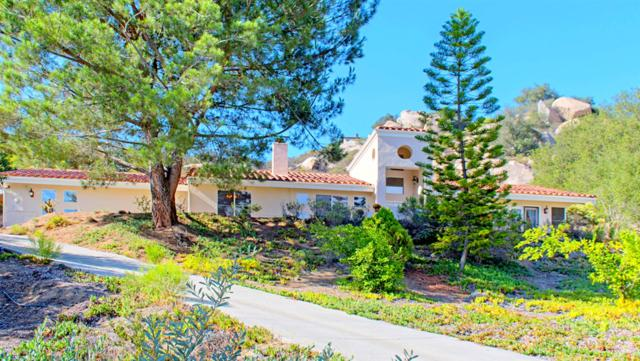 28436 Fallen Tree Lane, Escondido, CA 92026 (#180057469) :: Coldwell Banker Residential Brokerage