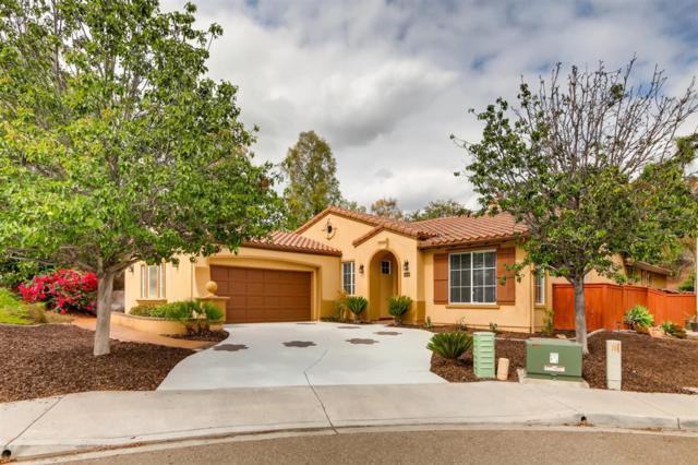 2605 Santa Barbara Ct, Chula Vista, CA 91914 (#180057629) :: The Yarbrough Group