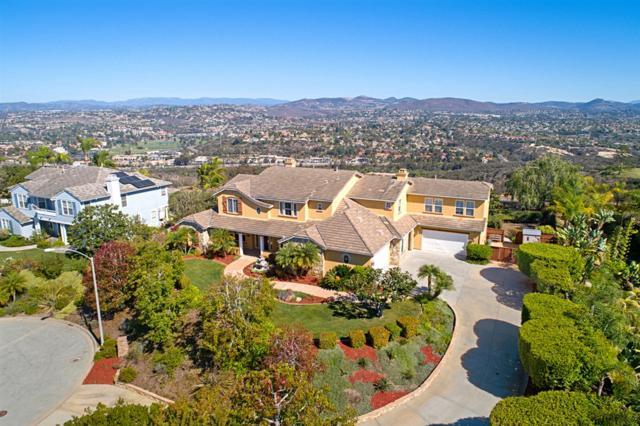 1601 Aryana Drive, Encinitas, CA 92024 (#180058851) :: Coldwell Banker Residential Brokerage