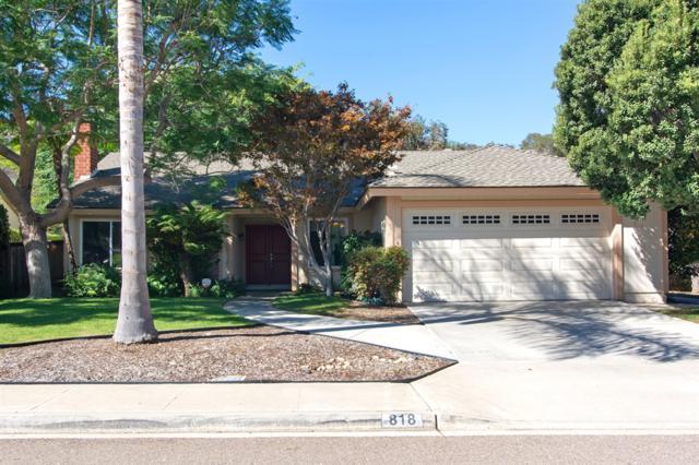 818 Birchview Dr, Encinitas, CA 92024 (#180058974) :: Coldwell Banker Residential Brokerage