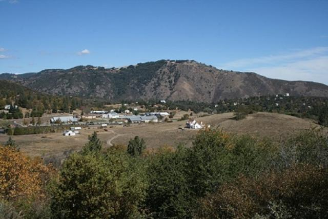 5+Acres Hwy 79 #03, Julian, CA 92036 (#180059791) :: Whissel Realty