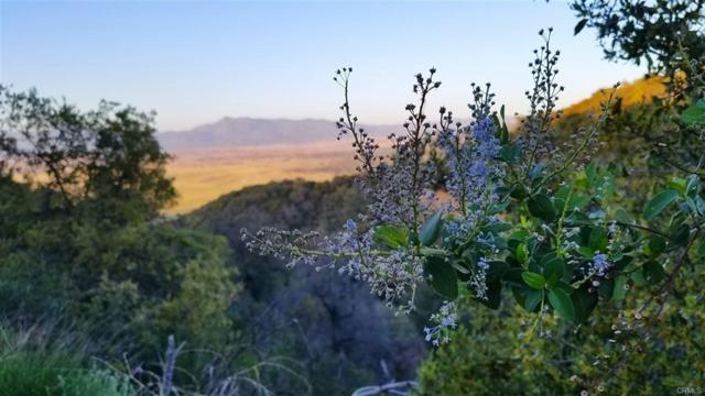 10 Acres Eagle Gap Rd. #0, Santa Ysabel, CA 92070 (#180060832) :: Whissel Realty