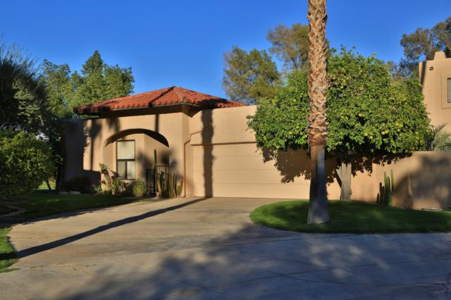 202 Pointing Rock Dr #9, Borrego Springs, CA 92004 (#180060856) :: Whissel Realty
