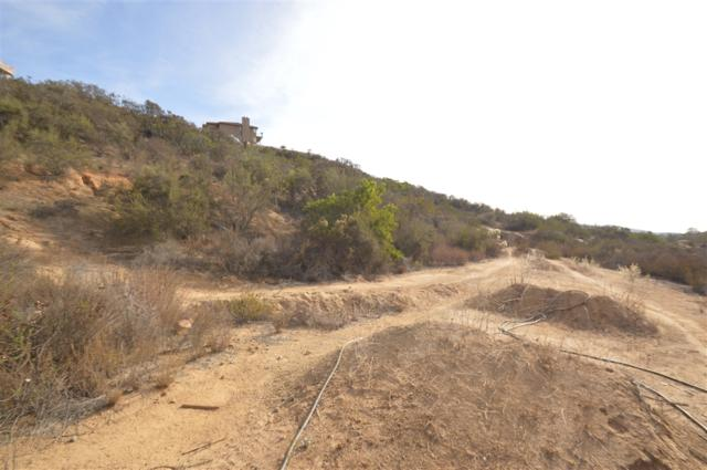 2.26 AC Terra Seca #2, Jamul, CA 91935 (#180061099) :: Keller Williams - Triolo Realty Group