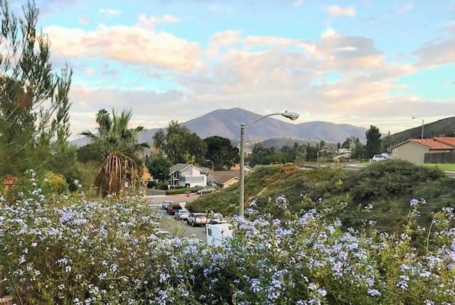 2805 Glen Canyon Cir, Spring Valley, CA 91977 (#180062663) :: Pugh | Tomasi & Associates