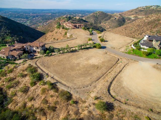 Lot 91 El Brazo #91, Rancho Santa Fe, CA 92067 (#180062701) :: KRC Realty Services