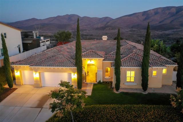 629 Via Porlezza, Chula Vista, CA 91914 (#180063185) :: Whissel Realty