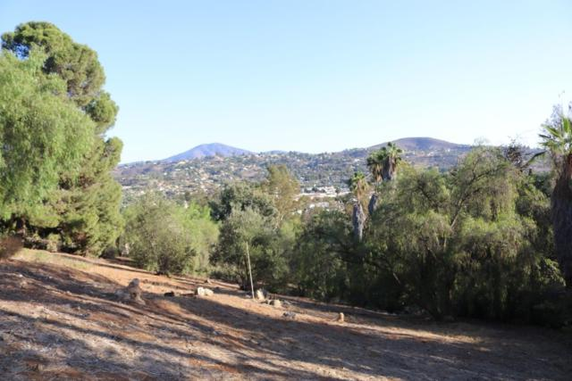 3899 1/2 Kenwood Dr 001818  Lot  18, Spring Valley, CA 91977 (#180063222) :: The Yarbrough Group