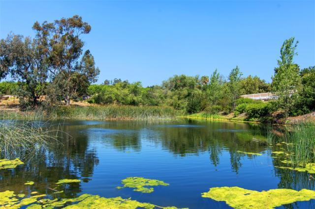 158 Lake Ridge Circle, Fallbrook, CA 92028 (#180063417) :: The Houston Team   Compass