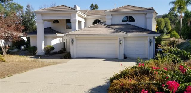 24007 Vista Vicente Ct, Ramona, CA 92065 (#180063554) :: Ascent Real Estate, Inc.