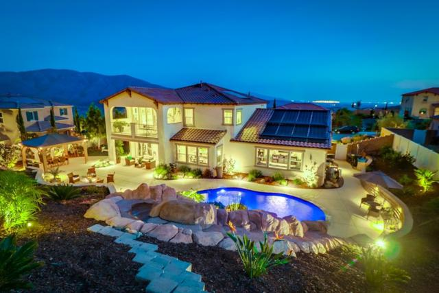 3225 Via Ponte Tresa, Chula Vista, CA 91914 (#180063921) :: Steele Canyon Realty