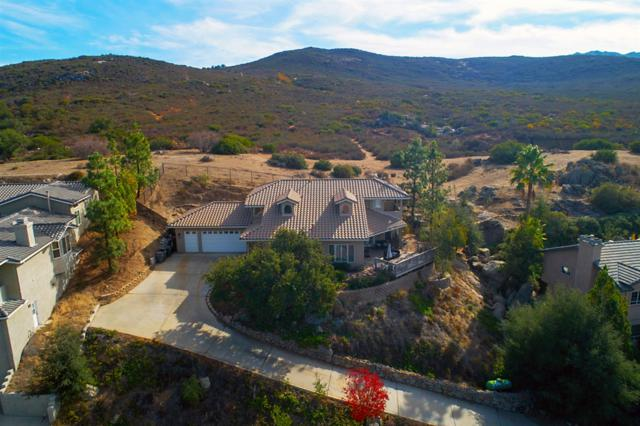 24509 Barona Mesa Rd, Ramona, CA 92065 (#180064552) :: The Yarbrough Group