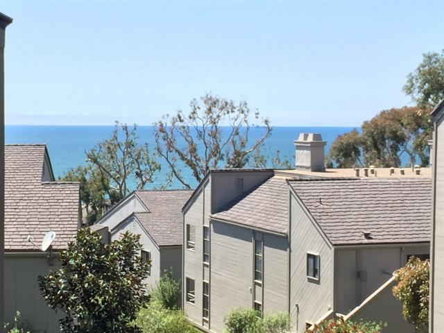 279 Sea Forest Court, Del Mar, CA 92014 (#180065100) :: Keller Williams - Triolo Realty Group