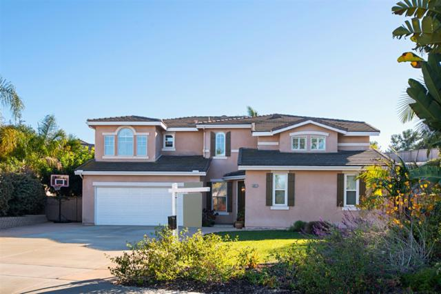 5021 Bella Collina St, Oceanside, CA 92056 (#180065428) :: The Yarbrough Group