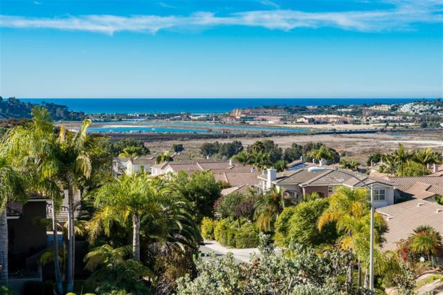 3930 Torrey Hill Lane, San Diego, CA 92130 (#180065537) :: The Yarbrough Group