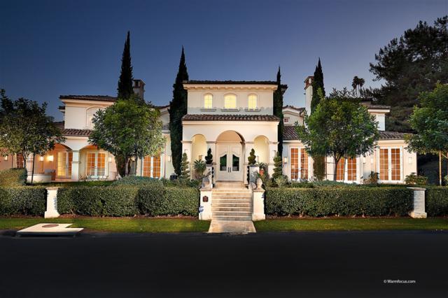 14296 Dalia Drive, Rancho Santa Fe, CA 92067 (#180066619) :: The Yarbrough Group