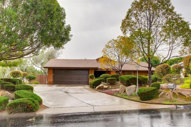 1036 Drifting Circle Drive, Vista, CA 92081 (#180066729) :: Keller Williams - Triolo Realty Group