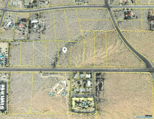 Palm Canyon Drive #286, Borrego Springs, CA 92004 (#180066870) :: Farland Realty