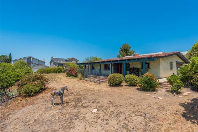1519 Maria Ave, Spring Valley, CA 91977 (#180067030) :: Beachside Realty