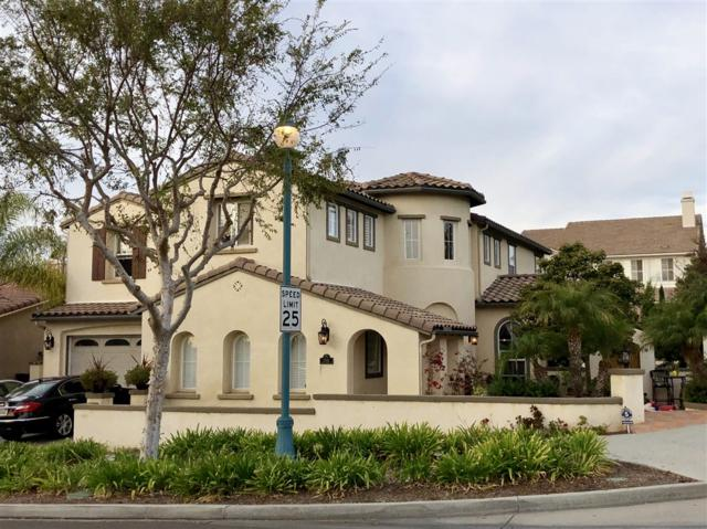 2582 Town Garden Road, Carlsbad, CA 92009 (#180067162) :: Beachside Realty