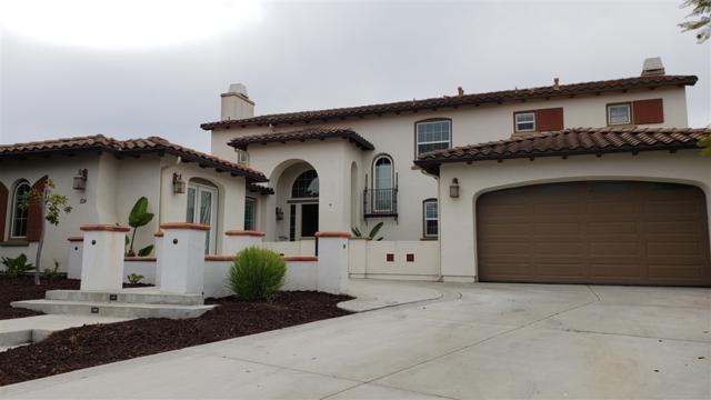 1124 Joshua Creek Place, Chula Vista, CA 91914 (#180067473) :: Farland Realty