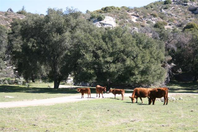 1973 Campo Truck Trail N/K, Campo, CA 91906 (#180067495) :: Welcome to San Diego Real Estate