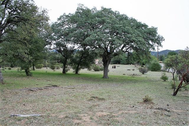 Meadowridge #38, Santa Ysabel, CA 92070 (#180068275) :: Keller Williams - Triolo Realty Group