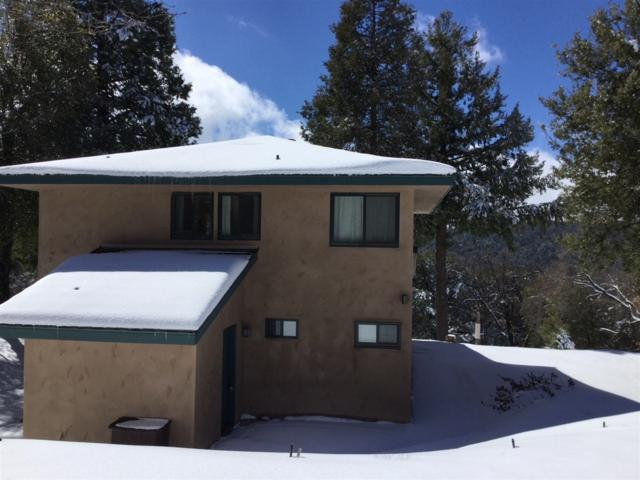 33462 Conifer Road, Palomar Mountain, CA 92060 (#190000170) :: Neuman & Neuman Real Estate Inc.