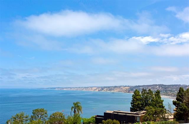 1526 Bluebird Lane, La Jolla, CA 92037 (#190000610) :: Whissel Realty