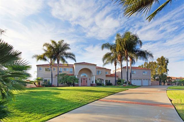 2347 Vista Grande Dr, Vista, CA 92084 (#190000622) :: Neuman & Neuman Real Estate Inc.