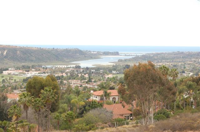 7203 Babilonia Street #701, Carlsbad, CA 92009 (#190000777) :: Steele Canyon Realty