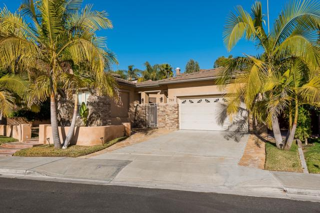 789 South Fox Run Pl, Chula Vista, CA 91914 (#190001338) :: Steele Canyon Realty