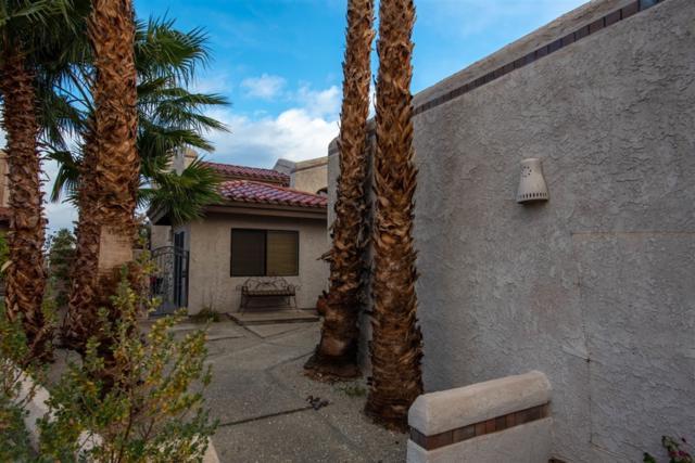 4551 Desert Vista Dr, Borrego Springs, CA 92004 (#190001339) :: Steele Canyon Realty