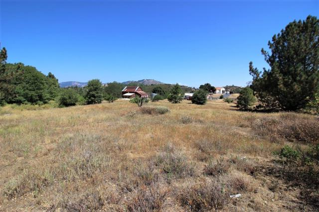 00 Oak Land Road #4, Julian, CA 92036 (#190001695) :: Whissel Realty