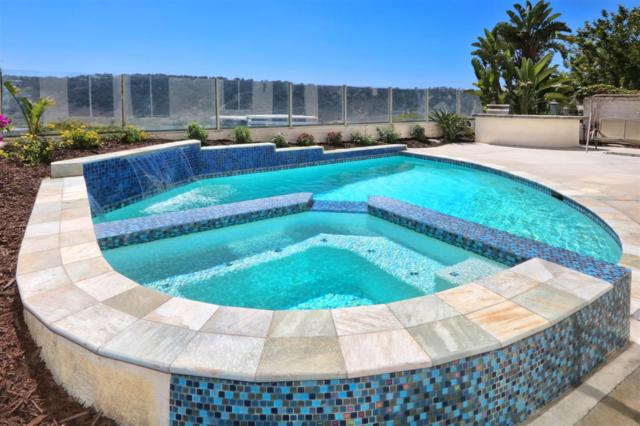 3684 Torrey View Court, San Diego, CA 92130 (#190001801) :: Coldwell Banker Residential Brokerage