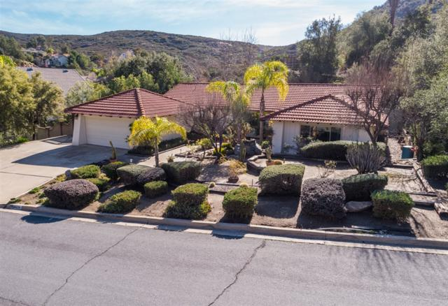 24023 Nectar Way, Ramona, CA 92065 (#190002024) :: Steele Canyon Realty