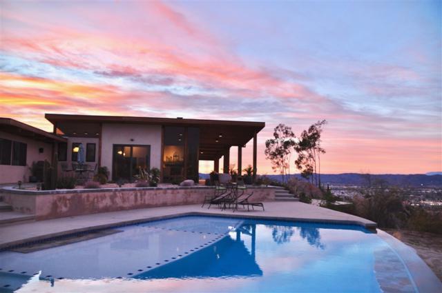 27780 Pachea Trail, Hemet, CA 92544 (#190002195) :: Neuman & Neuman Real Estate Inc.