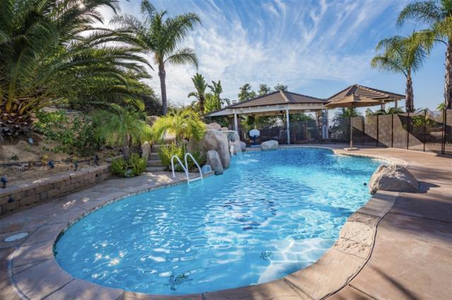 16313 Salida Del Sol, Ramona, CA 92065 (#190002278) :: Neuman & Neuman Real Estate Inc.