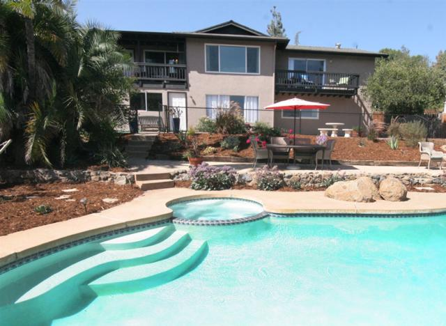 2859 Verde View, Alpine, CA 91901 (#190002310) :: The Najar Group