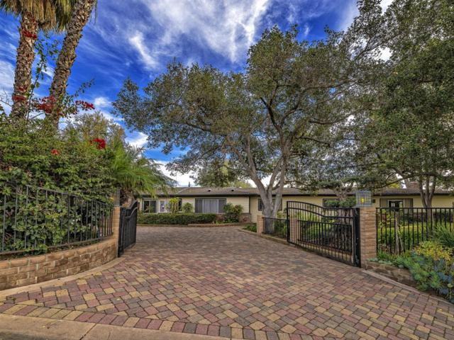 2923 Canonita Dr, Fallbrook, CA 92028 (#190002455) :: The Yarbrough Group