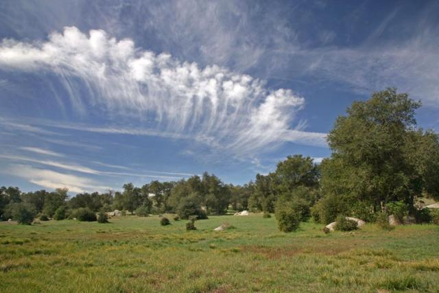 4295 Old Julian Highway, Santa Ysabel, CA 92070 (#190002598) :: Neuman & Neuman Real Estate Inc.
