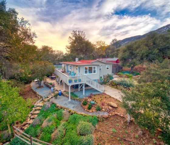20220 Elm Ln, Escondido, CA 92029 (#190002816) :: Steele Canyon Realty