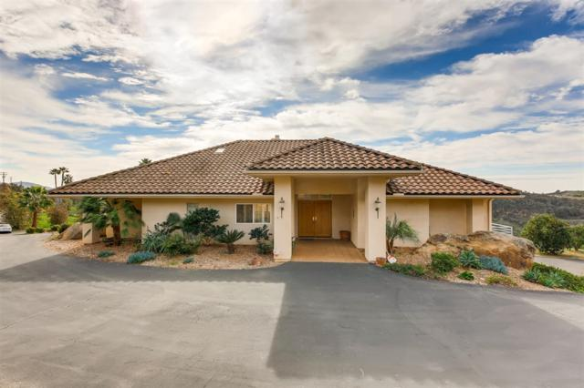 32503 Couser Canyon Rd, Valley Center, CA 92082 (#190002846) :: Steele Canyon Realty