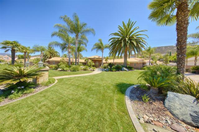 3525 Caroway Ct., El Cajon, CA 92019 (#190003452) :: Keller Williams - Triolo Realty Group