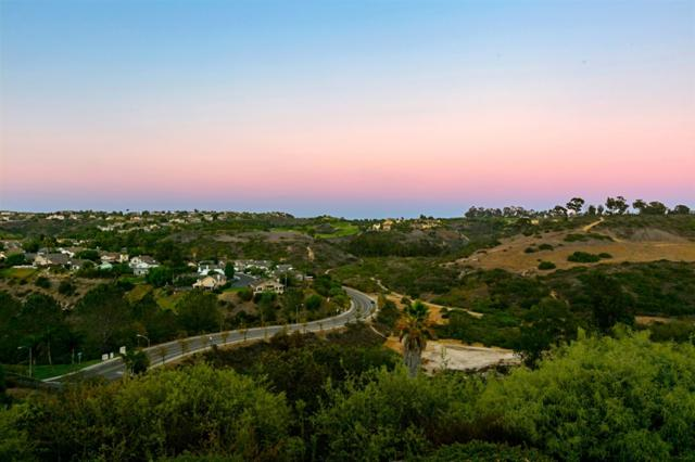 1403 Rainbow Ridge Lane, Encinitas, CA 92024 (#190003497) :: Neuman & Neuman Real Estate Inc.