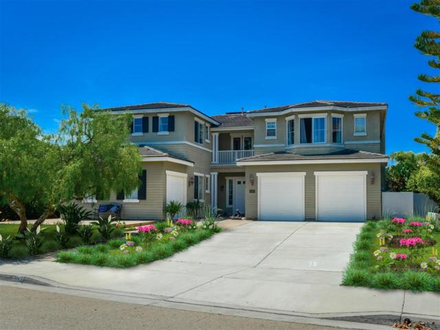 3047 Camino Serbal, Carlsbad, CA 92009 (#190003758) :: The Houston Team | Compass